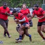 Bermuda Rugby Football Union League, November 24 2018-0633
