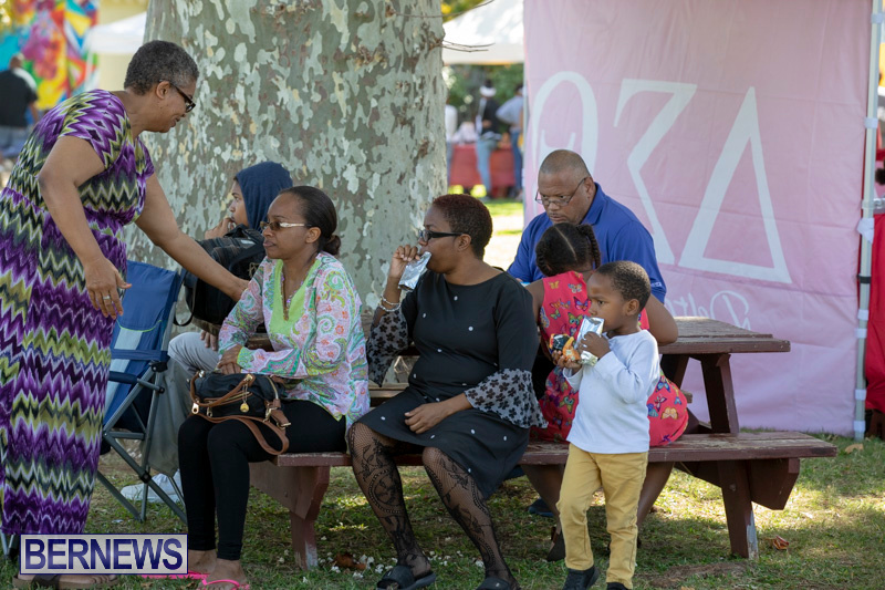 Delta-Sigma-Theta-Sorority-Childrens-Reading-Festival-Bermuda-November-3-2018-4099