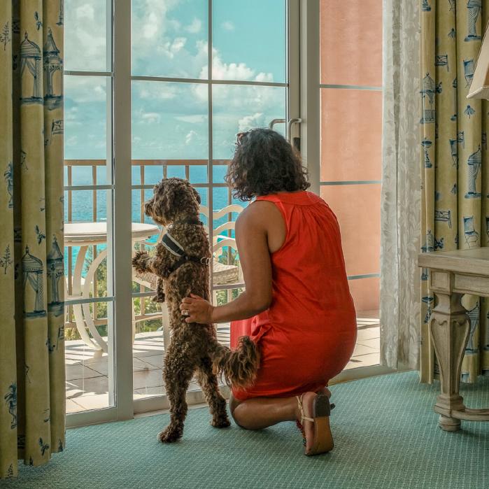 Fairmont Southampton Now Dog Friendly Bermuda Nov 14 2018 1