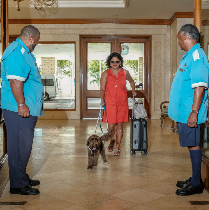 Fairmont Southampton Now Dog Friendly Bermuda Nov 14 2018 2