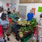 Farmer's Market Botanical Gardens Bermuda College, November 17 2018-9005