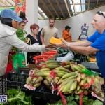 Farmer's Market Botanical Gardens Bermuda College, November 17 2018-9007