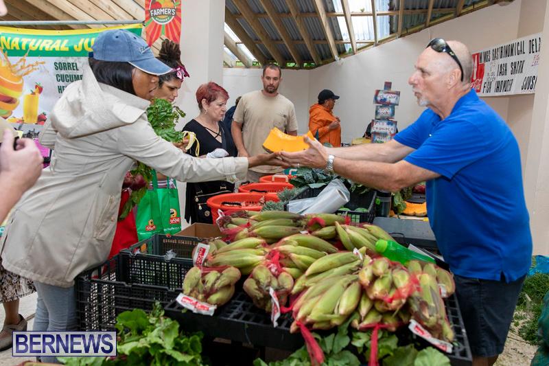Farmers-Market-Botanical-Gardens-Bermuda-College-November-17-2018-9007