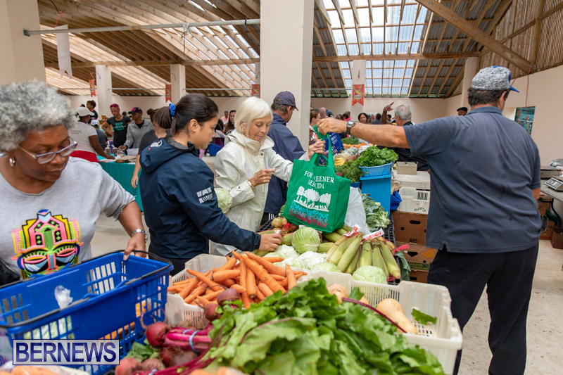Farmers-Market-Botanical-Gardens-Bermuda-College-November-17-2018-9071