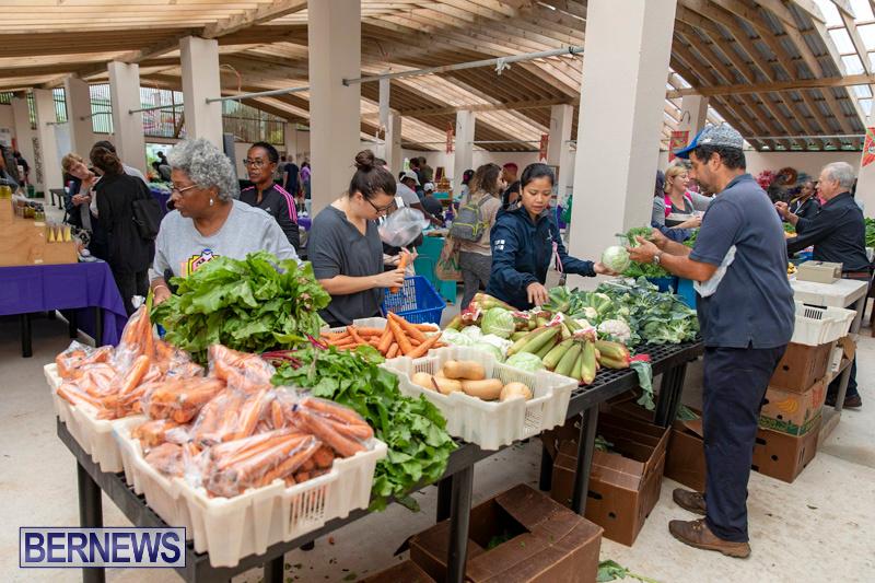 Farmers-Market-Botanical-Gardens-Bermuda-College-November-17-2018-9073