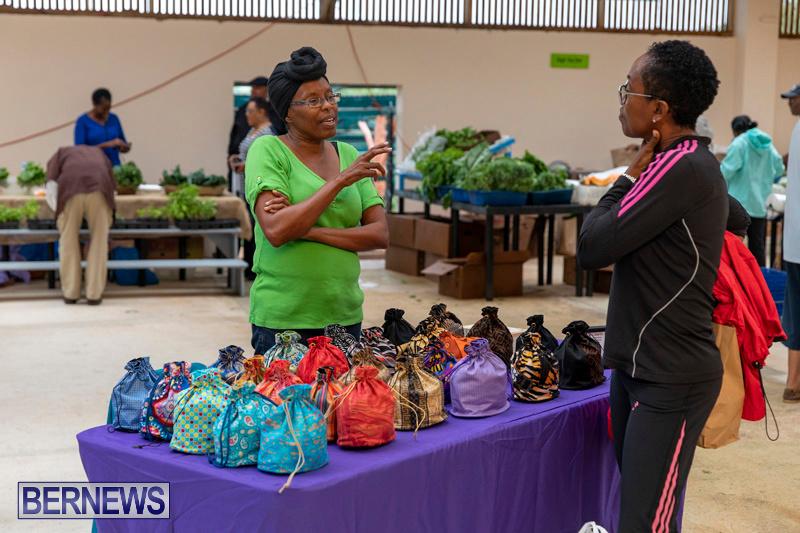 Farmers-Market-Botanical-Gardens-Bermuda-College-November-17-2018-9159