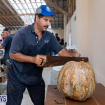 Farmer's Market Botanical Gardens Bermuda College, November 17 2018-9191