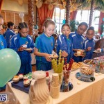 Harrington Sound Primary School Grotto Bay Hotel Christmas tree Bermuda, November 26 2018-1366