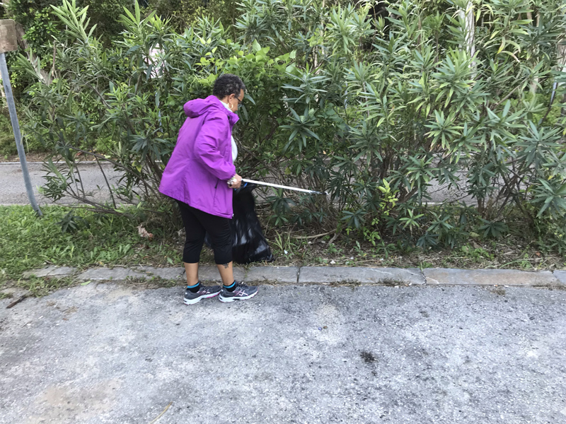 Marsh Fort Hamilton Clean Up Bermuda Nov 2018 (2)