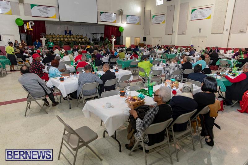 Seniors-Tea-Party-Bermuda-November-25-2018-0783