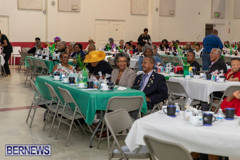 Seniors-Tea-Party-Bermuda-November-25-2018-0792