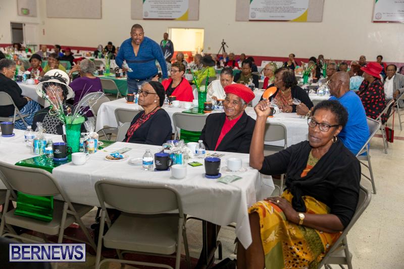 Seniors-Tea-Party-Bermuda-November-25-2018-0796