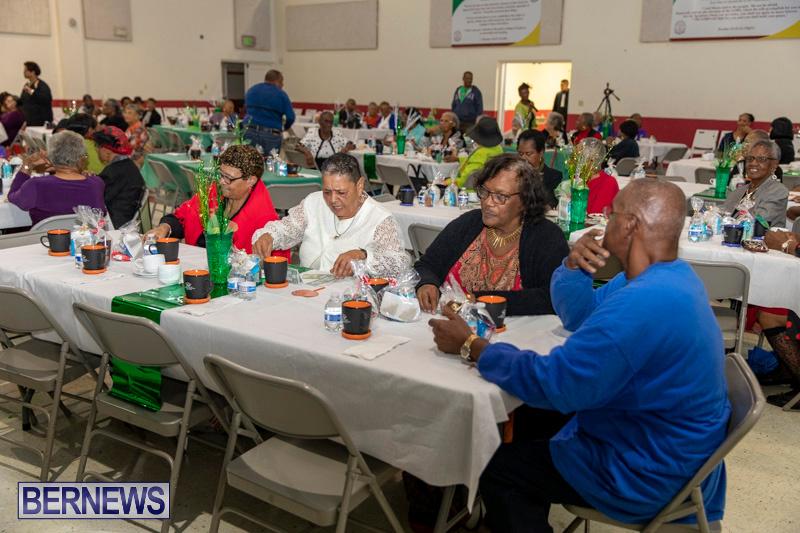 Seniors-Tea-Party-Bermuda-November-25-2018-0797