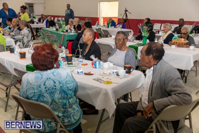 Seniors-Tea-Party-Bermuda-November-25-2018-0799