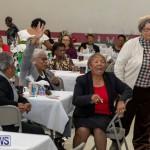 Seniors Tea Party Bermuda, November 25 2018-0804