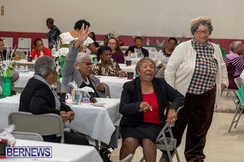 Seniors-Tea-Party-Bermuda-November-25-2018-0804