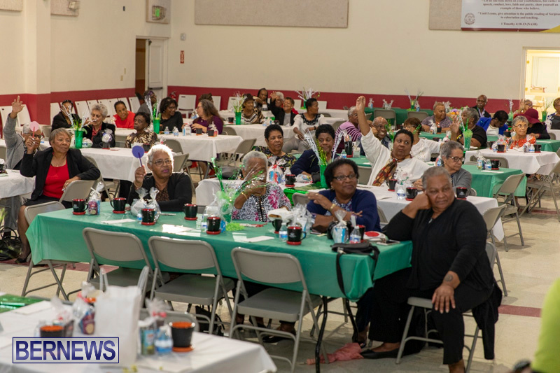 Seniors-Tea-Party-Bermuda-November-25-2018-0810