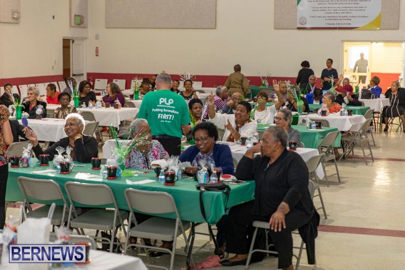 Seniors-Tea-Party-Bermuda-November-25-2018-0813