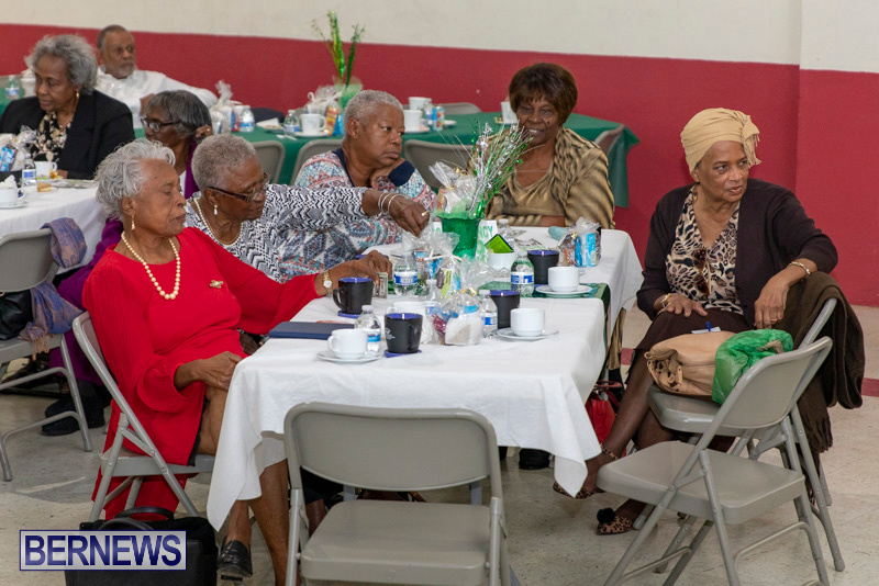 Seniors-Tea-Party-Bermuda-November-25-2018-0815