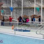 Student Cardboard Boat Challenge Bermuda, November 15 2018-8461