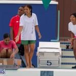 Student Cardboard Boat Challenge Bermuda, November 15 2018-8513