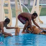 Student Cardboard Boat Challenge Bermuda, November 15 2018-8632