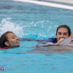 Student Cardboard Boat Challenge Bermuda, November 15 2018-8723