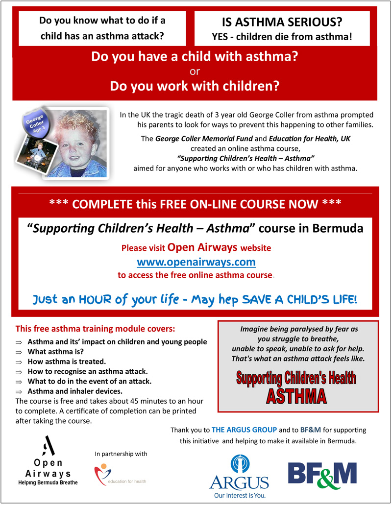 Supporting Children's health Online Course Flyer 1