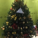 Charity Christmas Tree Bermuda December 2018 (11)