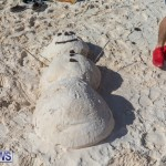 Christmas Day Bermuda at Elbow Bay Beach 2018 DF (15)