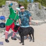 Christmas Day Bermuda at Elbow Bay Beach 2018 DF (3)