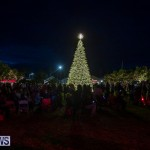 Destination Dockyard Tree Lighting Ceremony Bermuda, December 2 2018-2840