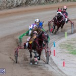 Harness Pony Racing Bermuda, December 26 2018-5999