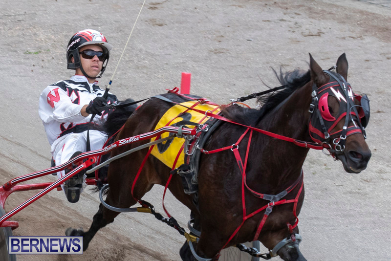 Harness-Pony-Racing-Bermuda-December-26-2018-6004