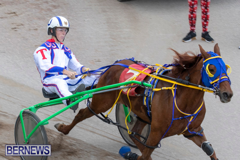 Harness-Pony-Racing-Bermuda-December-26-2018-6007
