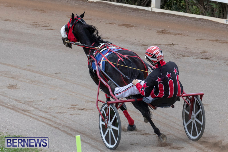 Harness-Pony-Racing-Bermuda-December-26-2018-6012
