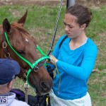 Harness Pony Racing Bermuda, December 26 2018-6042