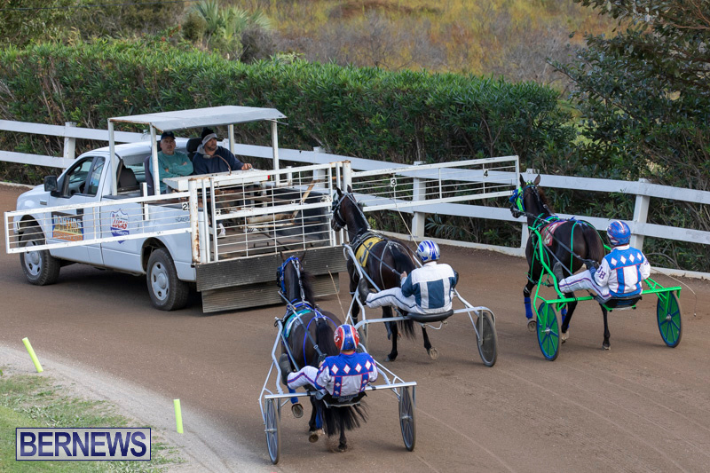 Harness-Pony-Racing-Bermuda-December-26-2018-6046