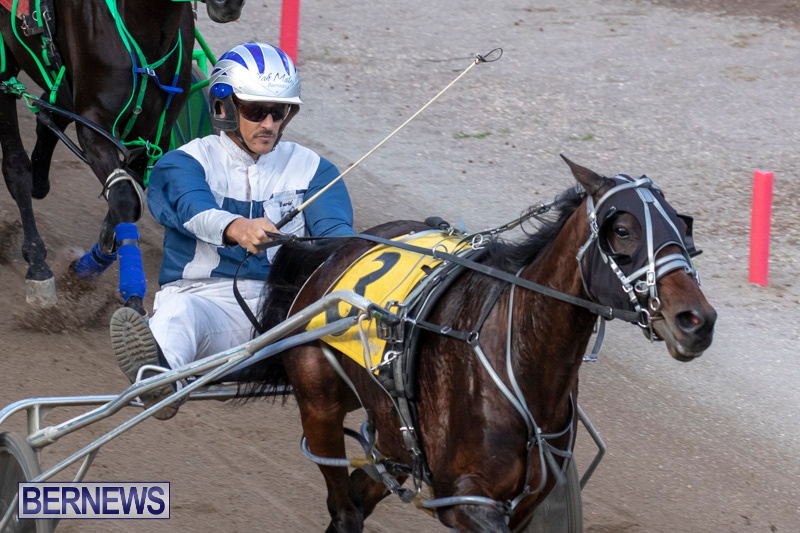 Harness-Pony-Racing-Bermuda-December-26-2018-6059