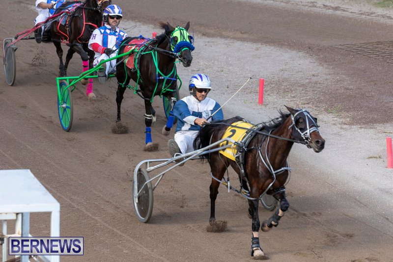 Harness-Pony-Racing-Bermuda-December-26-2018-6060