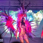 Bermuda Heroes Weekend BHW Band Launch Party People, January 20 2019-3894