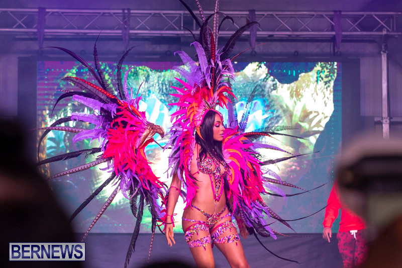 Bermuda-Heroes-Weekend-BHW-Band-Launch-Party-People-January-20-2019-3894