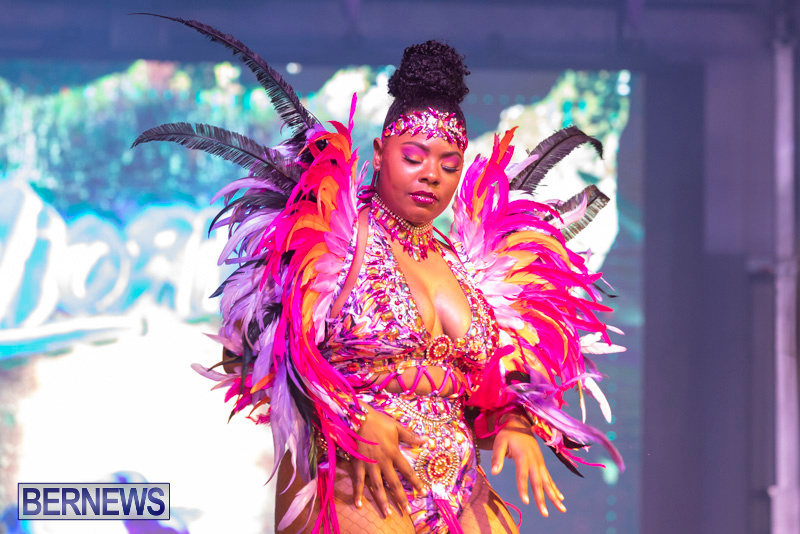 Bermuda-Heroes-Weekend-BHW-Band-Launch-Party-People-January-20-2019-3918