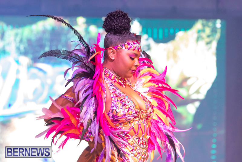 Bermuda-Heroes-Weekend-BHW-Band-Launch-Party-People-January-20-2019-3920