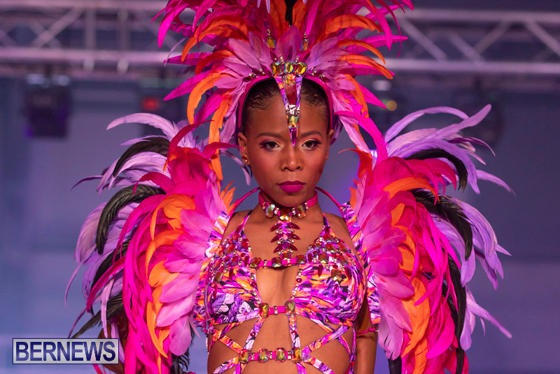 Bermuda-Heroes-Weekend-BHW-Band-Launch-Party-People-January-20-2019-3948