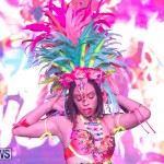 Bermuda Heroes Weekend BHW Band Launch Party People, January 20 2019-4065