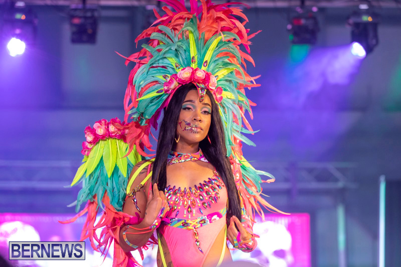 Bermuda-Heroes-Weekend-BHW-Band-Launch-Party-People-January-20-2019-4115