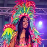 Bermuda Heroes Weekend BHW Band Launch Party People, January 20 2019-4118