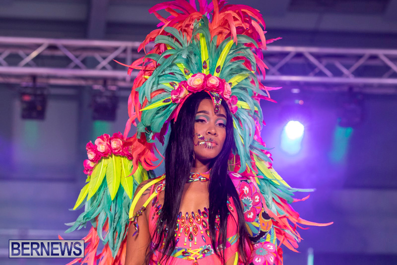 Bermuda-Heroes-Weekend-BHW-Band-Launch-Party-People-January-20-2019-4118