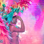 Bermuda Heroes Weekend BHW Band Launch Party People, January 20 2019-4232